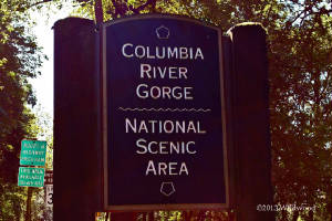 Columbia River Gorge sign